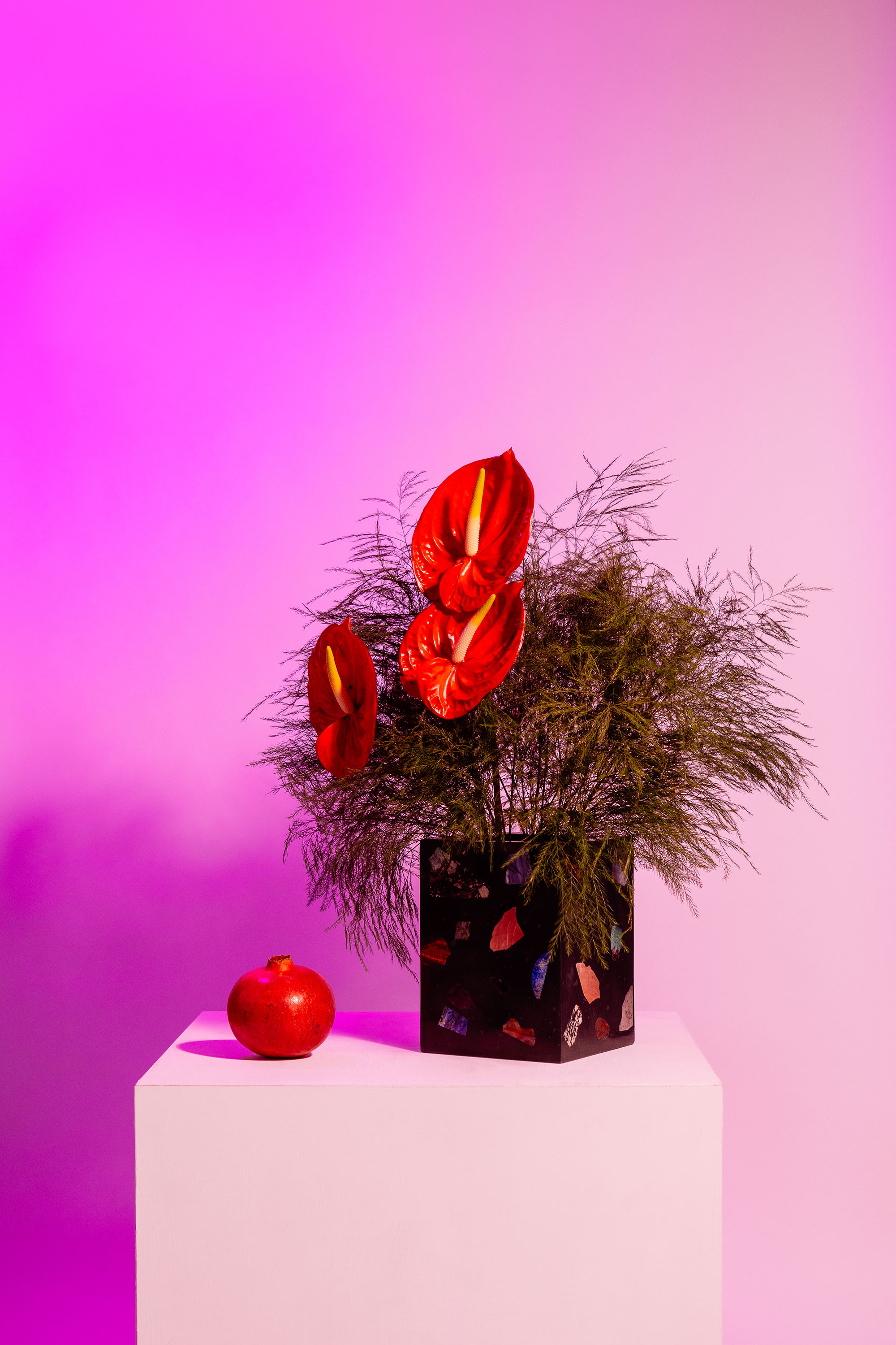 A black terrazzo design vase with red flowers and in a purple light.